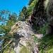 Sul Sentiero dei Pivion