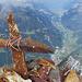 "Blick vom Gipfelkreuz ins Reusstal. 2551 Meter tiefer liegt unser Startpunkt ""Amsteg""."