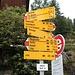<b>La salita al Piz Beverin è molto facilitata se si parte da uno di questi pascoli estivi. Il più gettonato è l'Alp Mursenas (1932 m), che fa risparmiare un'ora di salita e 385 m di dislivello. Per raggiungerlo con l'auto occorre imboccare una stradina asfaltata che parte poco sotto il parcheggio di Mathon, in prossimità del paletto con i segnavia. Si paga il pedaggio ad un distributore automatico: 10.- CHF per un giorno, oppure 20.- CHF per un mese e per gli assidui frequentatori 40.- CHF all'anno.</b>