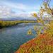 Mündung des Abiskojåkka in den Torneträsk.<br />Abiskojåkkas mynning vid Torneträsk.<br /><br />