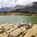 Alpine Strandszene mit benebeltem Wildhorn