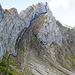 Ungefähr über die blau eingezeichnete Route (ohne Gewähr) könnte dem Band weiter gefolgt und schliesslich über eine Kletterstelle (III) direkt auf das Tomlishorn aufgestiegen werden. Eine Beschreibung findet sich im Bericht [tour38862 Über die wildeste Route auf den Pilatus] von [u Tobi]. Diese Route wurde hier NICHT gewählt. Stattdessen bin ich ca. ab dieser Stelle abgestiegen zum alten Tomilweg.
