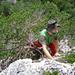 Schritt von der Baumkrone zurück in den Fels von E II