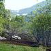 Alpe Serena mit Blick auf die Alpe Colma
