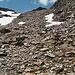 ab etwa 2600 Meter wirds steiniger, aber es bleibt immer bequem