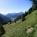 Alp Mundeis und im Tal unten Zernez