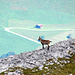 Ja Ja, die Aussicht am Hanghorn ist schön ;-)
