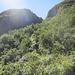 Buschiger Aufstieg zur Bocchetta di Serra