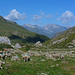 Vallée de Héas: sullo sfondo montagne del gruppo Cestrede - Chanchou - Ardiden (sui 2900)