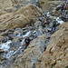 Escursionisti guadano le cascatelle