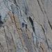 Rocciatori sulla parete sud del Pic des Sarradets