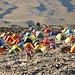 farbenfrohes Zeltlager bei Camp 3
