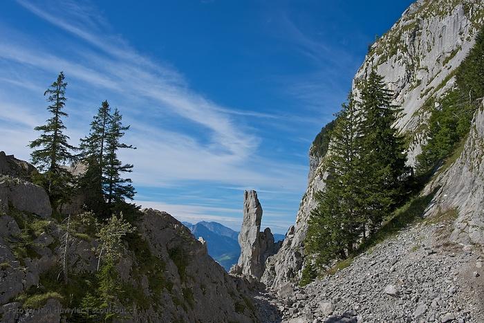 Nadelspitz beim Klettergarten Holzegg