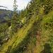 Durch die steile Westflanke des Storegghorns.