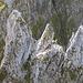 Dieses Bild fasziniert mich jedesmal: Scherenspitzen und -türme, vom Gipfel des Gamschopf aus gesehen