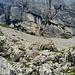 AUsstieg des alten Bründlenwegs unterhalb des Chastelendossen. Den kann man hier interessant direkt von der Westseite erklimmen