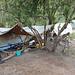 Das erste Camp auf ca. 3100 m Höhe. Immer noch mitten im Wald, aber mit genialen Ausblicken nach unten ausgestattet