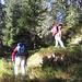 Sul sentiero che sale all'Alpe Ocola.