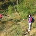 Sul sentiero per l'Alpe Ocola.