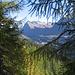 Da qui si gode una magnifica vista su San Bernardino e le sue montagne.