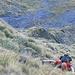 In der Ostflanke unter dem Rottor-Nordgrat: Steiler können (begehbare) Graswände nicht sein!