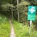 schmaler Wanderweg bei der Geissgratflue; für mich ist hier teilweise Bikeschieben angesagt