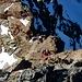 Im trockenen und bombenfesten Fels ist die Klettrei im dritten oder ganz kurz vielleicht unteren vierten Grat reinster Genuss:-)