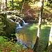 direkt nach dem Parkplatz bei Wengi liegt diese Badegumpe im Wald, nur im Oktober mag ich da nicht mehr rein :(