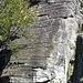 palestra roccia