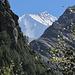 Epaule und Arrête du Blanc, dahinter der Gipfel
