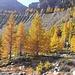 Herbststimmung im Hüttenzustieg zur Bordierhütte