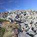 Unterwegs zwischen Midžor und Dupljak - In Gipfelnähe bedecken Steinblöcke große Teile der Bergflanke.