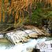 Herbst über den Wassern des Beverin