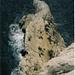 Klettern mit viiiel Meer unter den Füssen