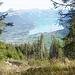 von Wald - Blickrichtung Brienzersee