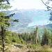 von Wald - Blickrichtung Brienzersee(v02)