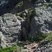 26.7. aufstieg zum pas du mont colomb