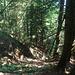 29.7. steiler abstieg nach breil-sur-roya - teil 1