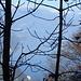 Scorcio sul ramo di Lecco con Bellagio in bella vista