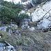 um dann bei einem umgestürztem Baum, rechts im Bild, durch eine Gasse aufwärts zu schlüpfen.Diese Stelle kann man versehentlich knapp darunter an einer weiteren Steigspur leicht übersehen, wenn man nicht direkt an der Felswand steht. Vermutlich gibt es weiter rechts vorne noch einen weiteren Durchstieg.