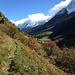 der kleine Wiesenpfad hinauf zum Schwarzsee