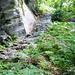 Abstieg von der Alpe Solögna - massive Treppenanlagen