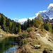 Lötschentaler Höhenweg mit Schwarzsee