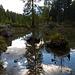 Auf dem Rückweg, ein Spiegelbild im Seelein südwestlich Poz da Rügiul.