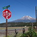 Getting closer: Next stop, Mt. Shasta!