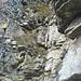 Haariges Abklettern zum Zweiten: nicht zu fest an den Griffen ziehen, der Fels ist ungemein fluchtfreudig!