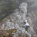 Schöne Klettereien