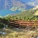 Der Abstieg am Güpfi-Nordgipfel führt am Rande von Lawinenverbauungen abwärts.