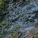 Cramosino-Talweg - viele exponierte Abschnitte