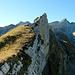 Auf dem Grat der Rossmad mit Blick zum Säntis